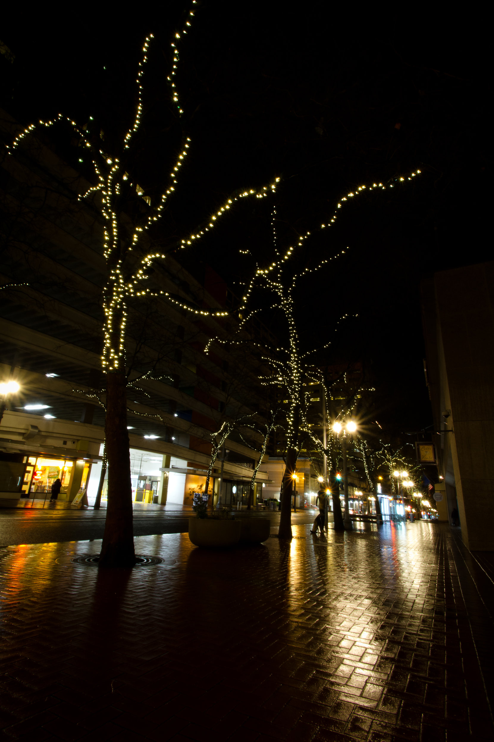 Downtown Portland Hollywood Lights